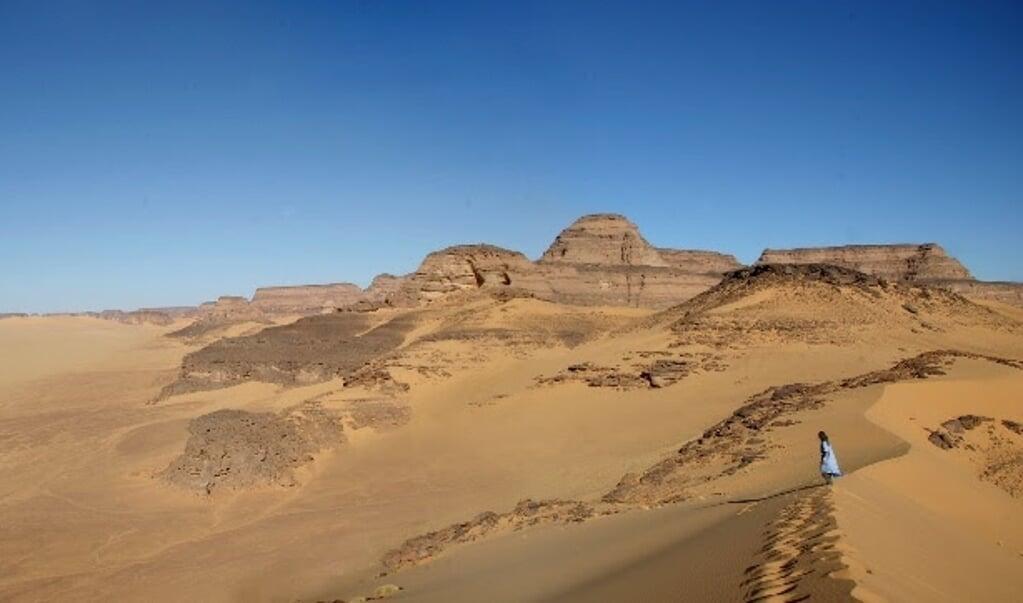 De Sahara.  (beeld Savino di Lernia)