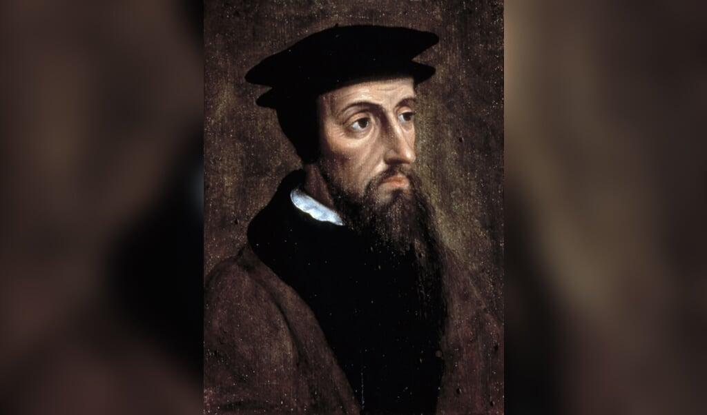 Johannes Calvijn  (beeld )