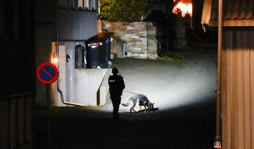 Een politieagent doet met een speurhond onderzoek in Kongsberg.  (beeld afp / Håkon Mosvold Larsen)