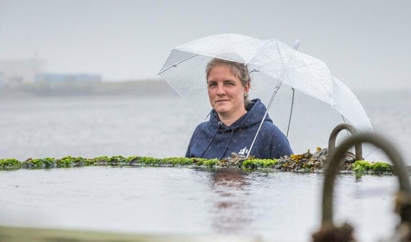 De zee stijgt, het risico ook: 'Zolang er geen overstromingen zijn, denken mensen: we zijn veilig'
