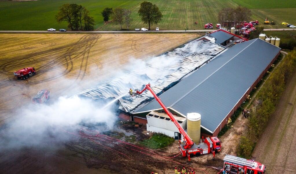 Bij deze stalbrand in het Brabantse Heusden kwamen in 2018 4000 varkens om.  (beeld anp / Rob Engelaar)
