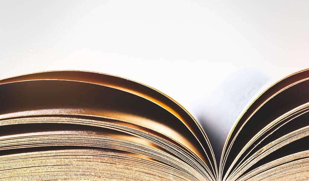 In het herschreven hoofdstuk wordt datgene wat geen tucht meer heet in een breder kader geplaatst van onderling toezicht.   (beeld istock)