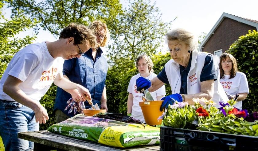 Prinses Beatrix steekt haar handen uit de mouwen voor de vrijwilligersactie NLdoet.  (beeld anp / Sem van der Wal)