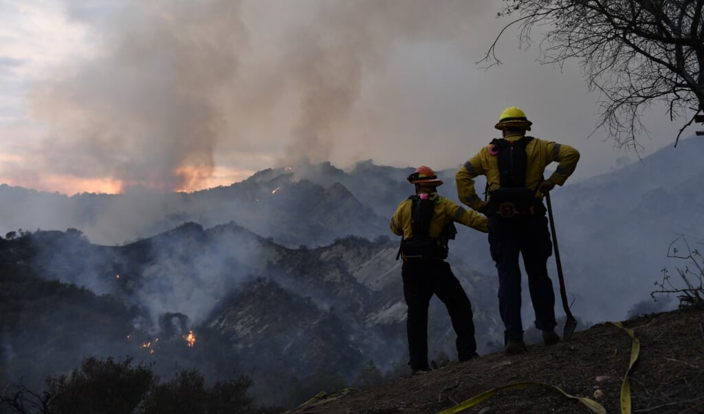 Vooral in bossen boven de 2500 meter breekt vaker brand uit.  (beeld afp / Fallon / afp)
