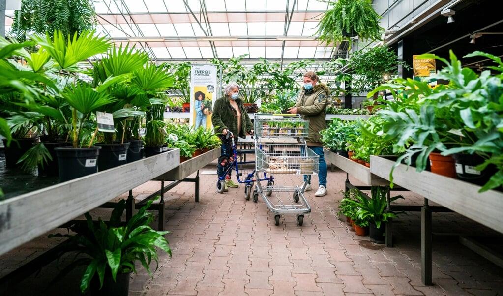 Van planten en potgrond uit drie grote tuincentra werden monsters genomen.  (beeld hollandse hoogte / anp)