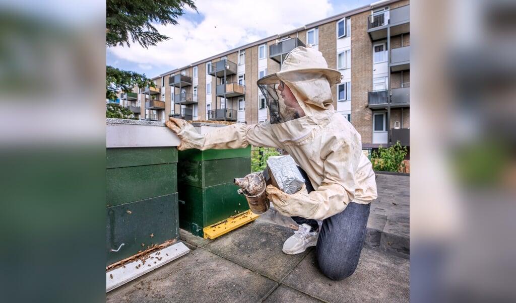 Zoon Ismael bij de bijenkasten op het garagedak.  (beeld Raymond Rutting)