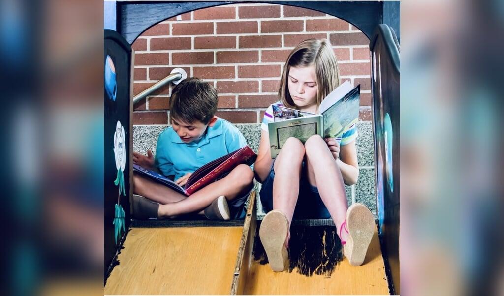 'Lezen en zingen, ze kunnen je de dag en het leven door helpen', schrijft literatuurrecensent Tewin van den Bergh.  (beeld unsplash / Adam Winger)