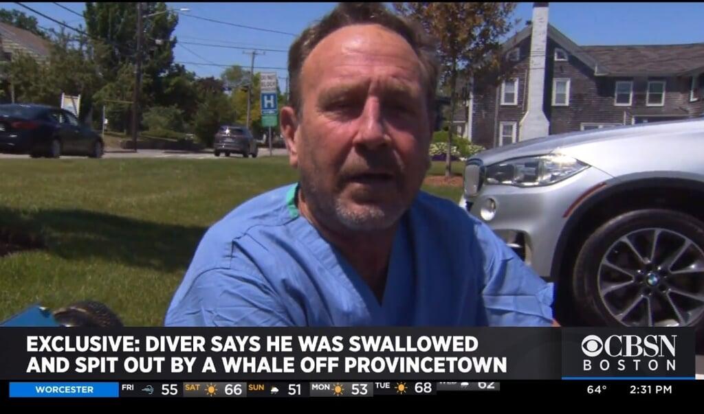 Duiker zegt dat hij in de bek van een walvis zat.  (beeld redactie nd)