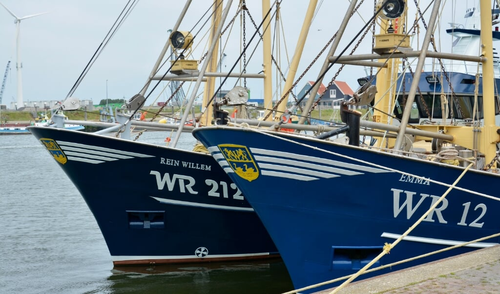 Vrijdagmiddag in de haven van Den Oever, de vloot is binnen.  (beeld Arie Kok)