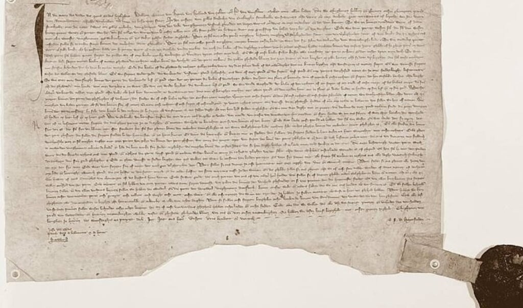 Het originele document waarmee Rotterdam stadsrechten toegekend kreeg.  (beeld stadsarchief rotterdam)