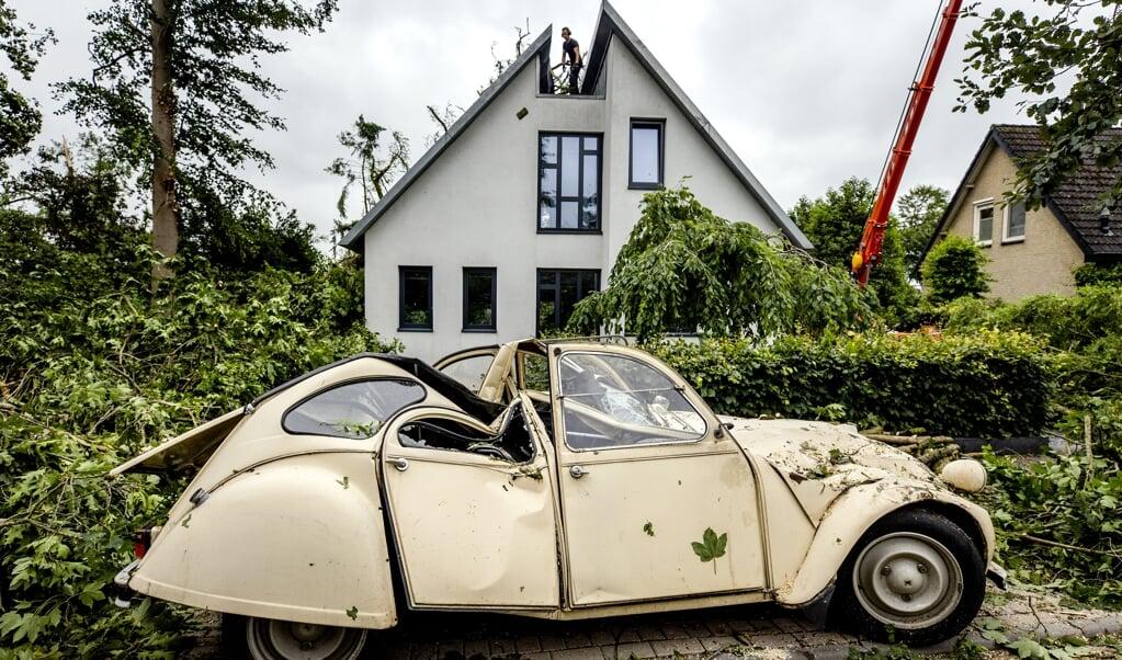 Een Eend raakte beschadigd door een omgevallen boom in Leersum.  (beeld anp / sem van der wal)
