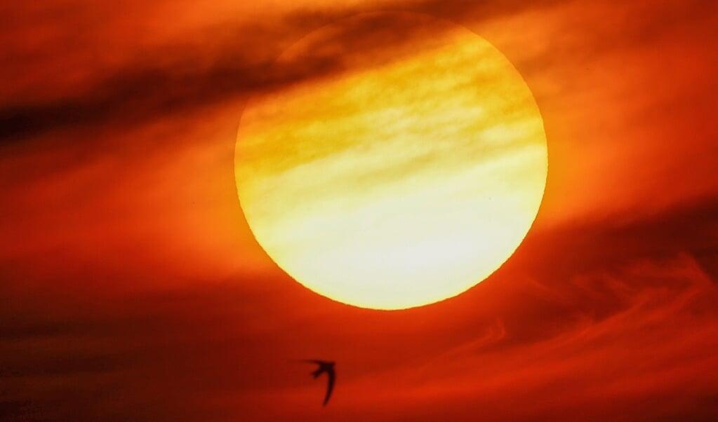 Van den Brink verdedigt in het hoofdstuk over de zon die bleef stilstaan bij Gibeon uitvoerig het geloof in wonderen.  (beeld afp / David Gannon)