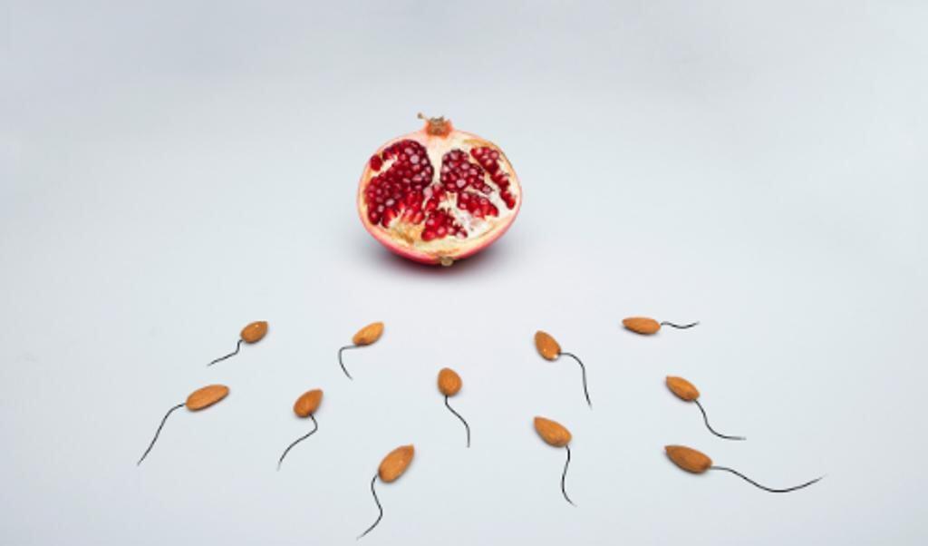 Hoe kweek je uit stamcellen spermaproducerende cellen?  (beeld pexels)
