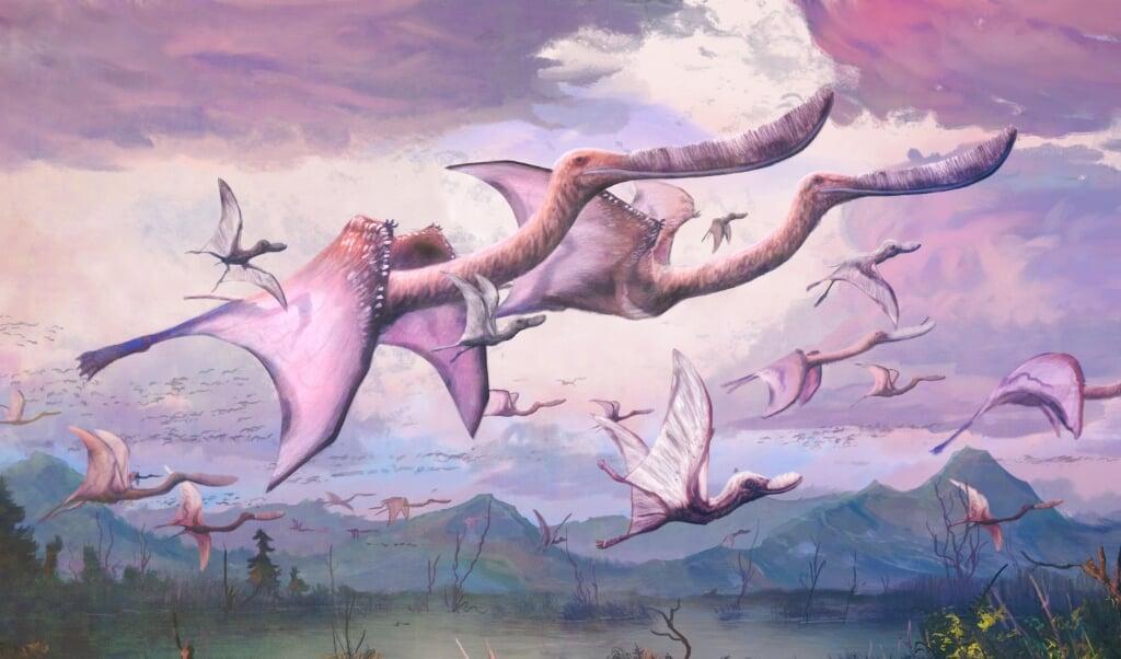 Reconstructie van volwassen en jonge flamingo-achtige pterosauriërs van de soort Pterodaustro guinazui, een van de twee soorten die in het artikel is bestudeerd.  (beeld Mark Witton)