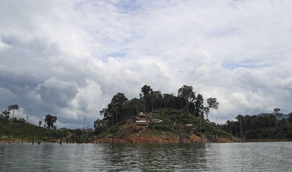 Een beschermd en tegelijk bedreigd regenwoud in Noordwest-Maleisië.  (beeld epa / Fazry Ismail)