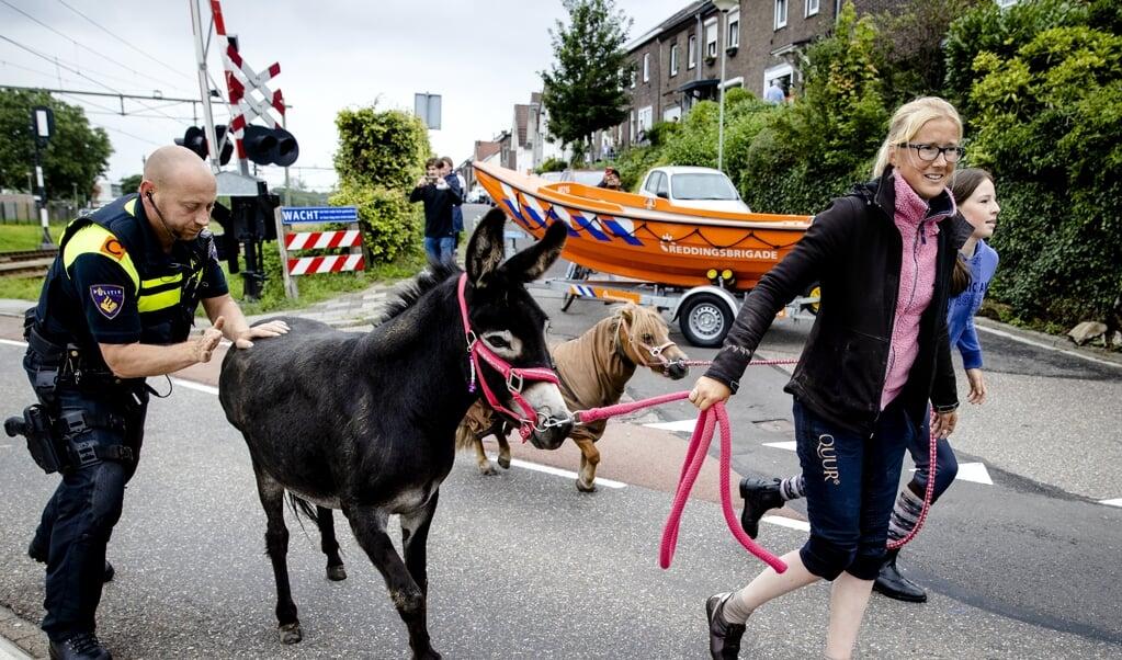 Bewoners van Meerssen na de dijkdoorbraak  (beeld anp / Sem van der Wal)