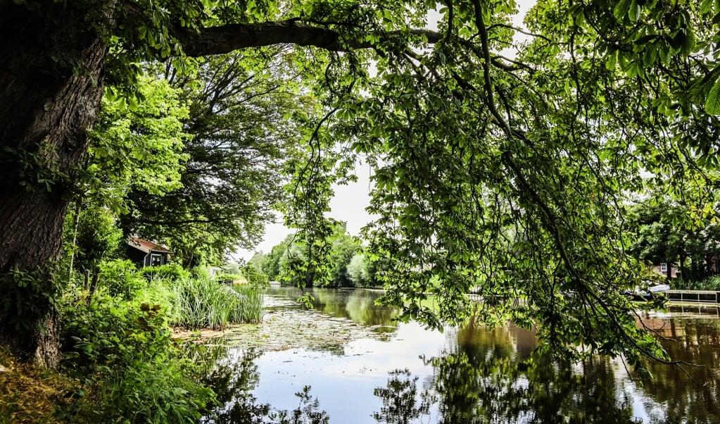 De Alblas  (beeld Maarten Boersema)