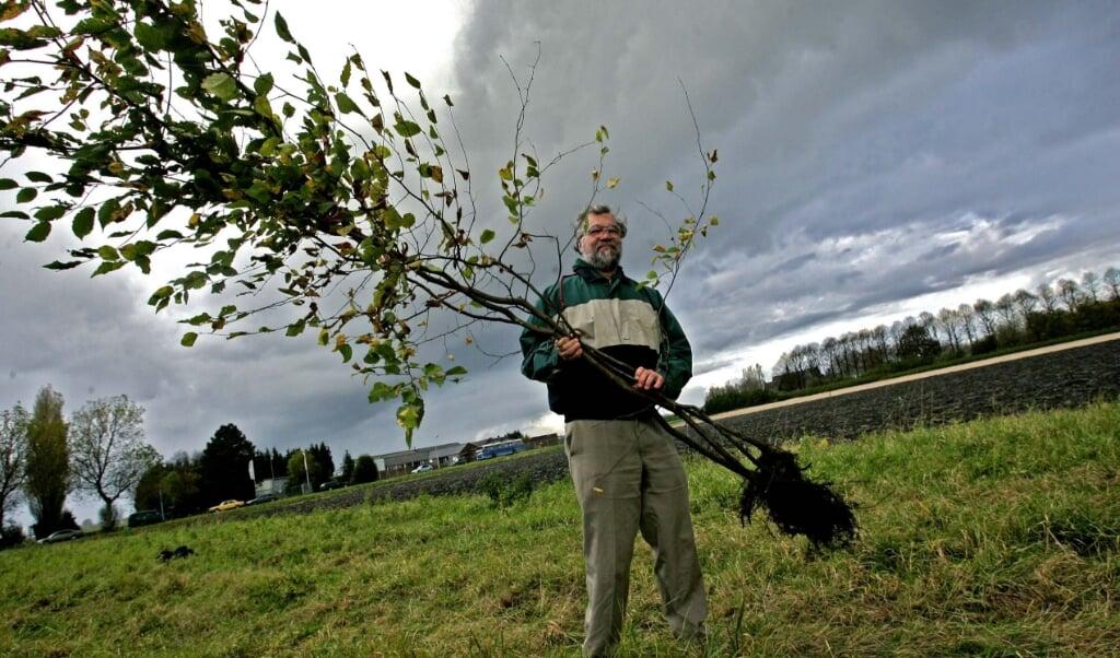 Bossen zorgen voor meer regen.  (beeld anp)