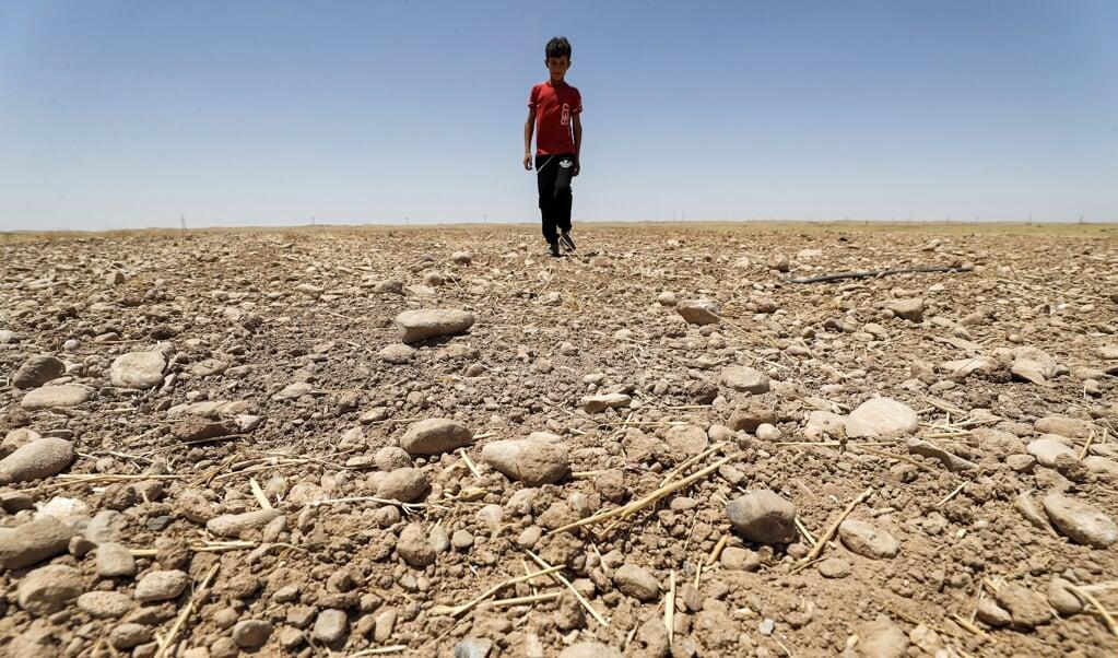 Een jongen loopt door een opgedroogd landbouwgebied in het Saadiya-gebied, ten noorden van Diyala in het oosten van Irak.  (beeld afp / Ahmad Al-Rubaye)