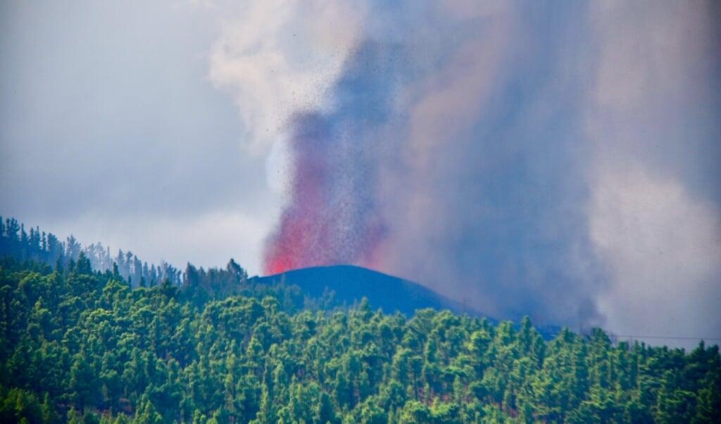 Een lavastroom uit de vulkaan op La Palma verwoest alles wat hij op zijn pad kruist.  (beeld epa / Miguel Calero)