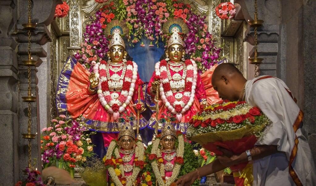 Een hindoepriester voert een ritueel uit bij de hindoegoden Krishna en Balarama.   (beeld afp / Manjunath Kiran)