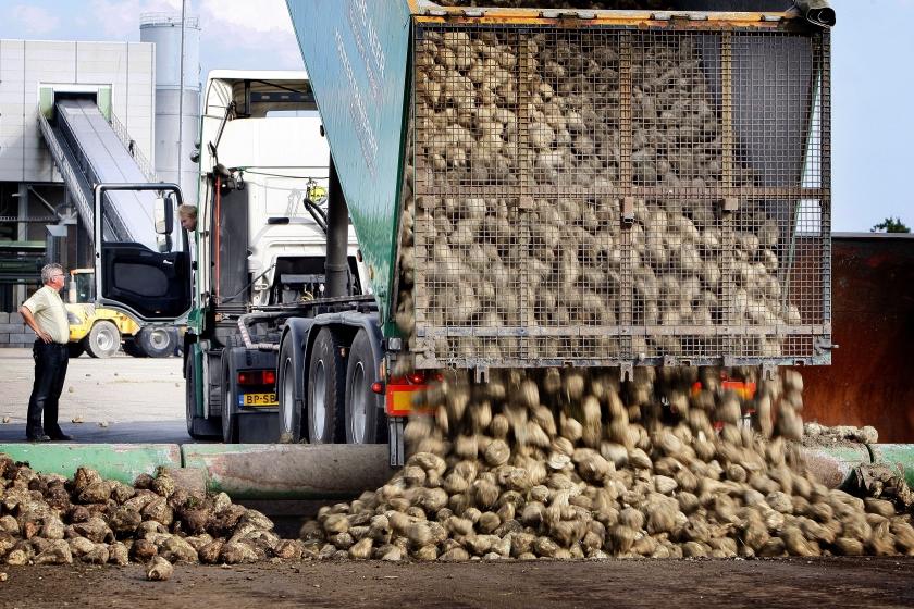 Brussel akkoord met Nederlandse landbouwsteun