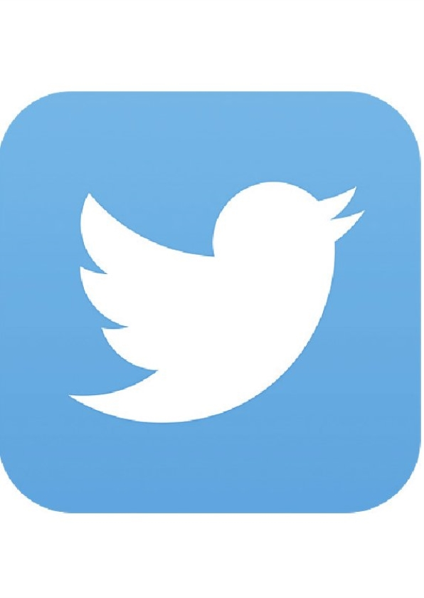 Ieder bedrijf mag op Twitter een advertentie zetten