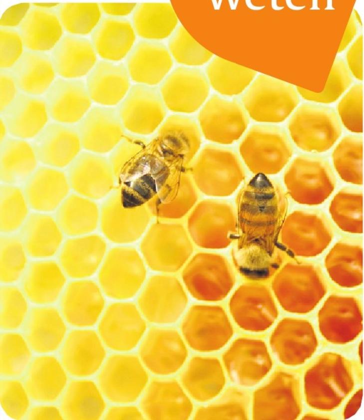 Meer weten: Honing