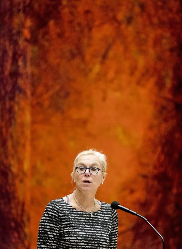 Minister Sigrid Kaag.  (anp / Koen van Weel)