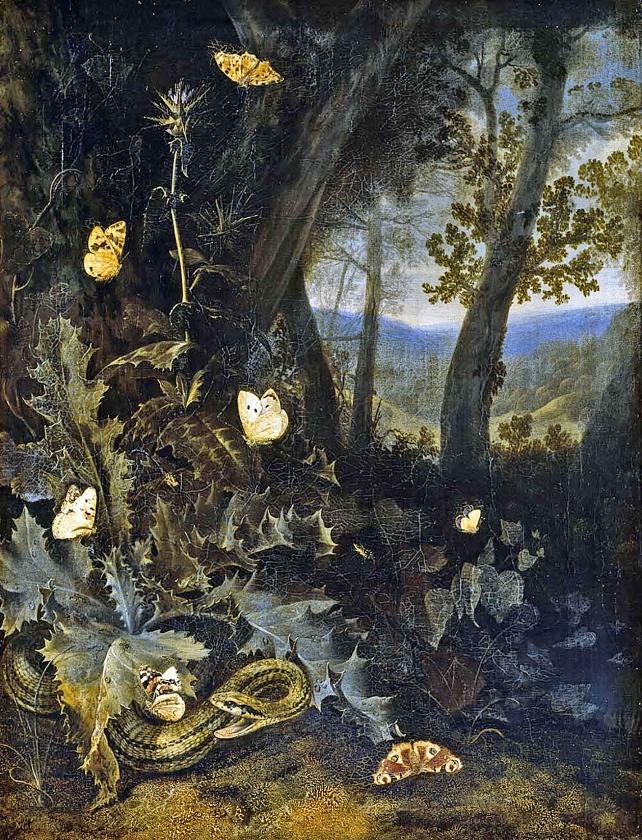 Marseus van Schrieck richtte zijn blik naar onooglijke dieren.   (nd)