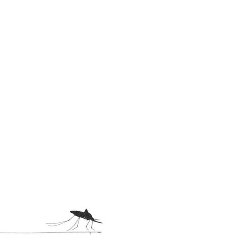 Mug vliegt na het steken héél voorzichtig weg  (vk)