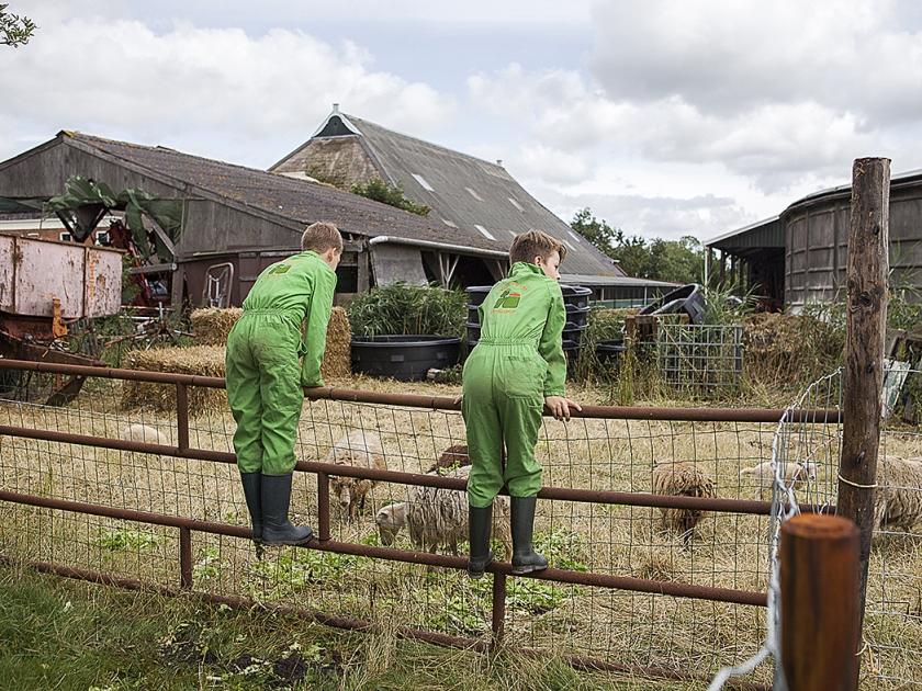 Zorgboerderij de Heemen in Stedum. beeld Marieke Kijk in de Vegte  (Harry CockMarieke Kijk in de VegteHarry CockHarry CockHarry CockMarieke Kijk in de VegteMarieke Kijk in de Vegte)