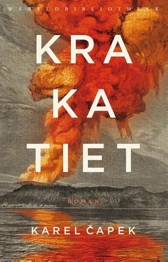Literatuur: een roman als een pleidooi voor kleine dingen