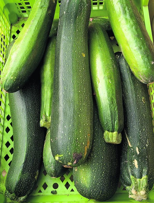 recept: macaronischotel met courgette  (ap)