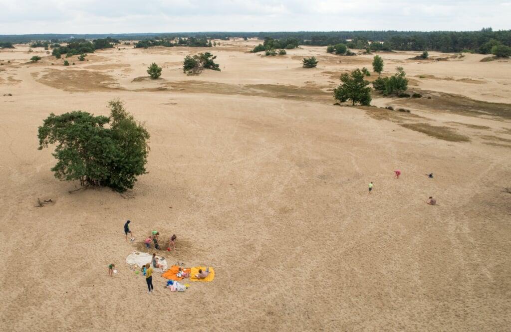 Vanaf de locatie van de uitkijktoren op het Kootwijkerzand is het dichtstbijzijnde toilet zes kilometer verderop in Harskamp.  (beeld Hans-Lukas Zuurman)