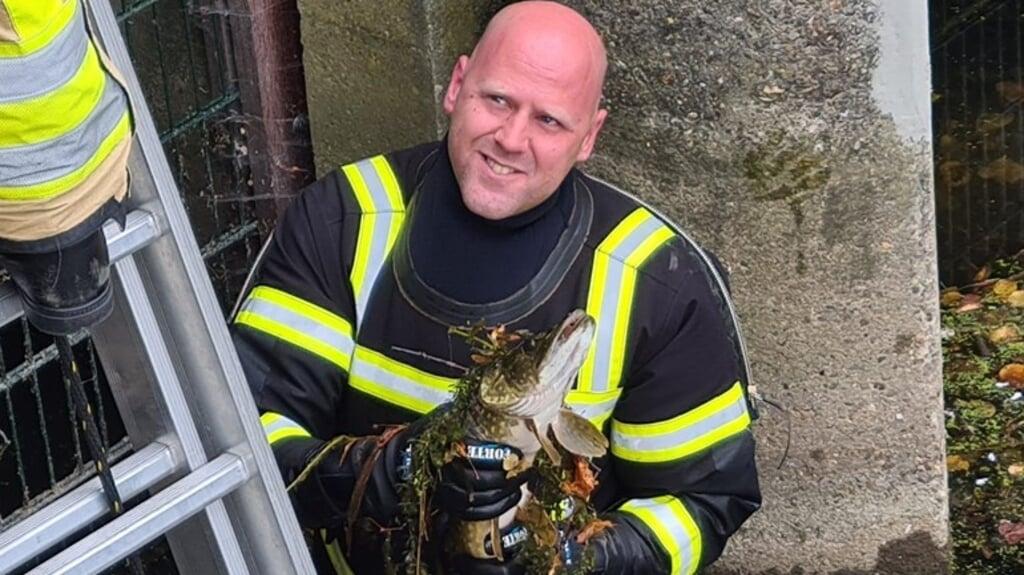 Een vrijwilliger van de brandweer met de snoek die vastzat onder een brug.  (beeld dierenambulance kampen)