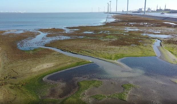 De proefkwelder bij Delfzijl in november. Foto: EcoShape-Eemsdelta Drones.
