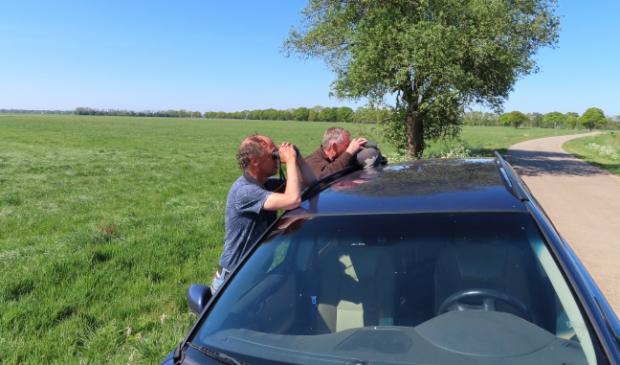 <p>Vrijwilligers van Landschapsbeheer Drenthe observeren de weidevogels.&nbsp;</p>