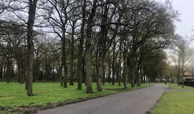 De Ekkelkamp met aanpalende brink, die in beeld is voor de aanleg van een rondweg.