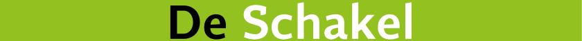 Logo deschakelalbrandswaard.nl