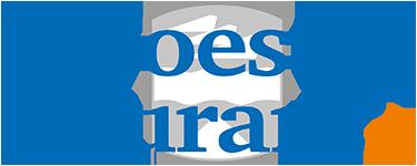 Logo soestercourant.nl