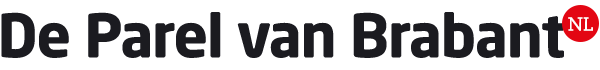 Logo deparelvanbrabant.nl