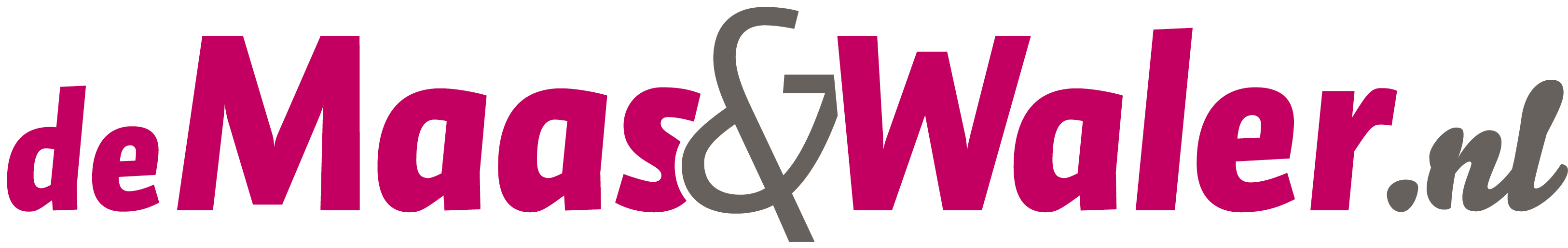 Logo demaasenwaler.nl