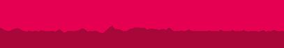 Logo veluwekoerier.nl