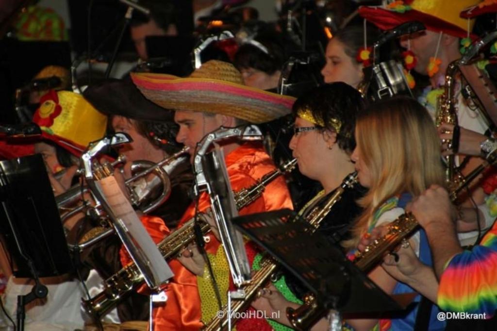 Het carnavalsconcert Rocks! Foto:  © mooibernheze