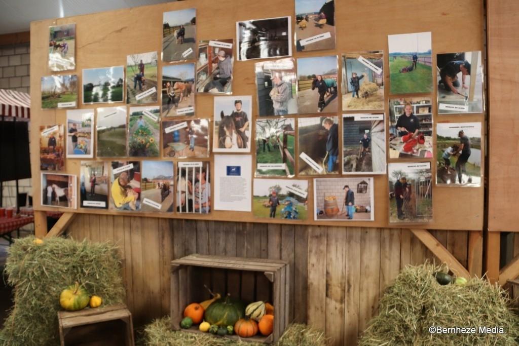 Vorstenbosch - Pompoenfair Zorgboerderij van der Wijst  Foto: Heidi Verwijst © mooibernheze
