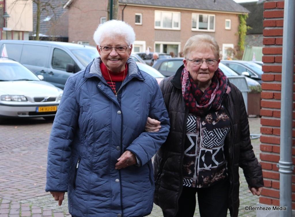 Nistelrode - Zonnerit Zonnebloem Foto: Heidi Verwijst © mooibernheze