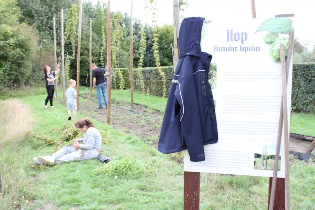 Heeswijk-Dinther - Hop naar 't veld Foto: Wendy van LIjssel © mooibernheze