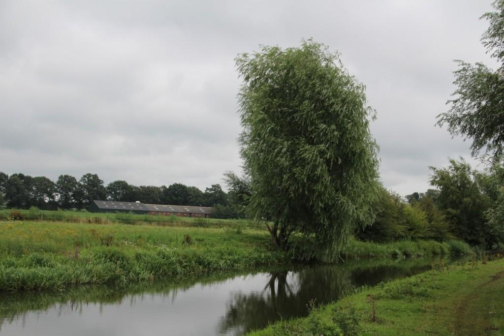 Heeswijk-Dinther - Het VerhAal Foto: Rian van Schijndel © mooibernheze