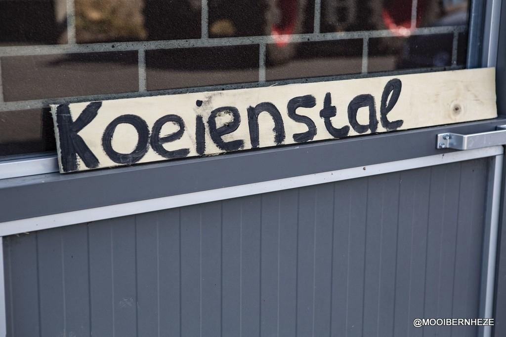 Nistelrode - Drive-in De Dierenvriendjes Foto: Marcel van der Steen © mooibernheze